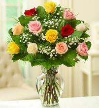 Premium Long Stem Assorted Roses