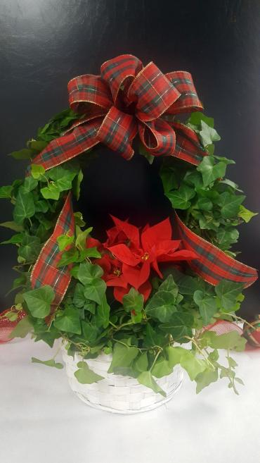 Christmas Ivy Wreath - Large