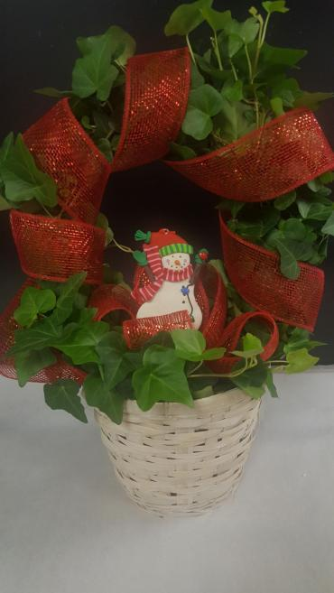 Christmas Ivy Wreath - Small