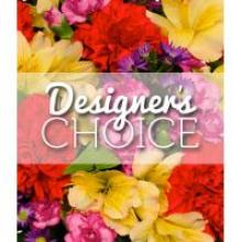 Birthday Designers Choice