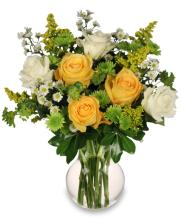 White & Yellow Roses