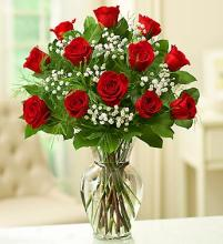 Red Roses for Valentine\'s