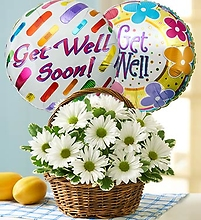 Basket Full of Daisies with Get Well Balloon